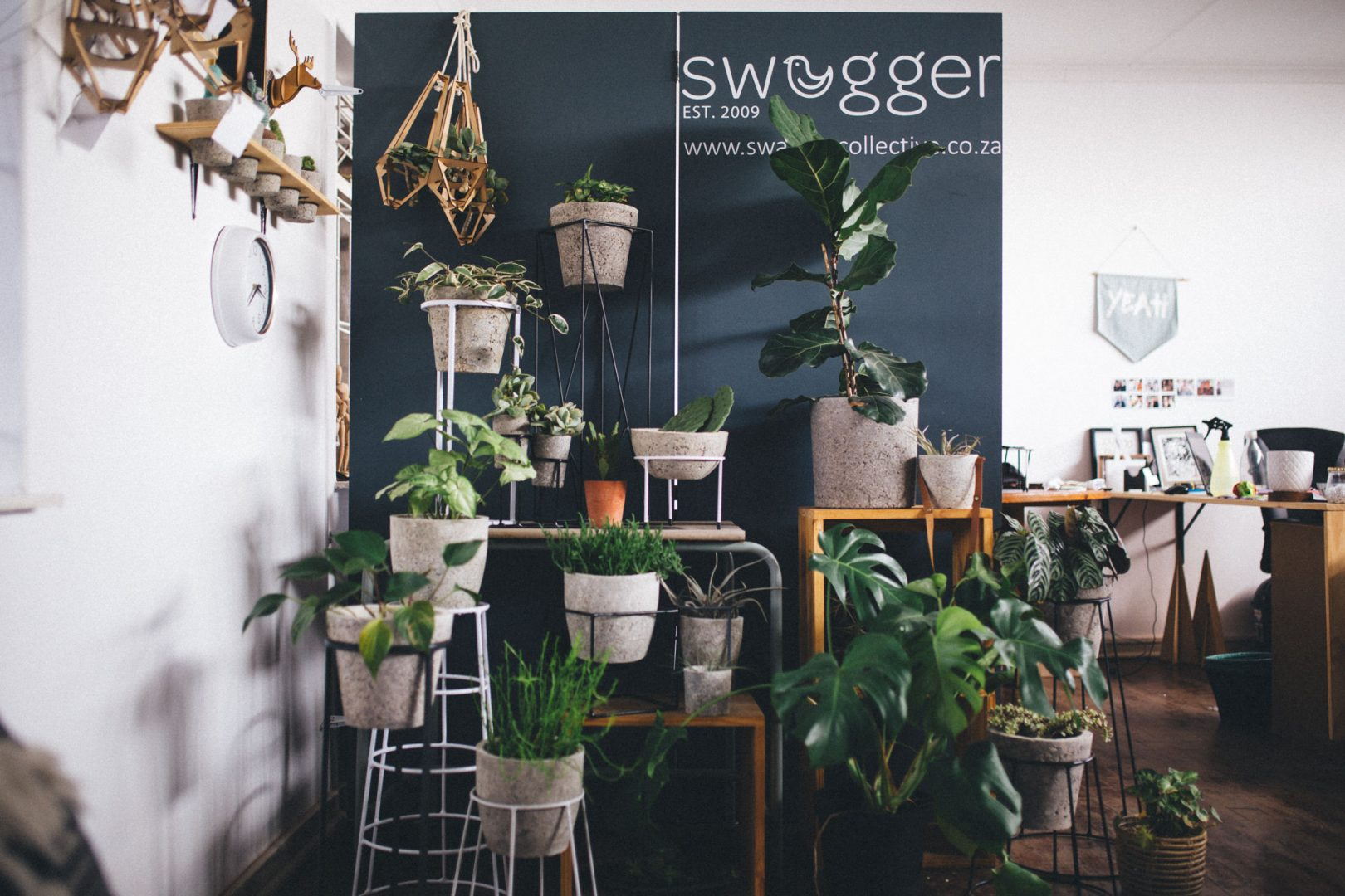 Tharien Strydom Swagger Collective